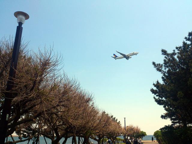 飛行機好きにはたまらない公園!